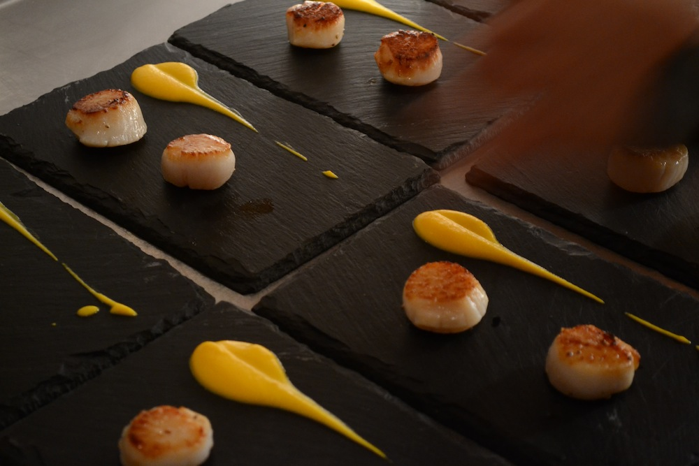 Scallops + Carrot Puree