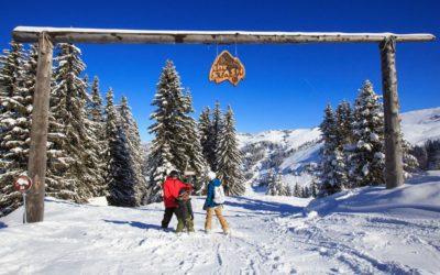 The Stash Snowpark